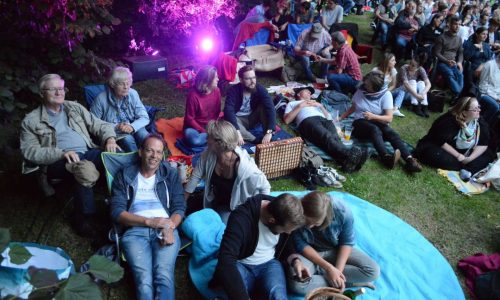 Picknick Open Air Kino Elmshorn; Besucher